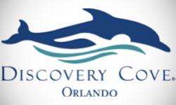 Discovery Cove Logo Design