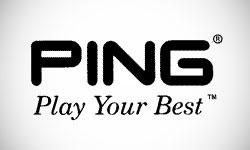 Ping Logo Design